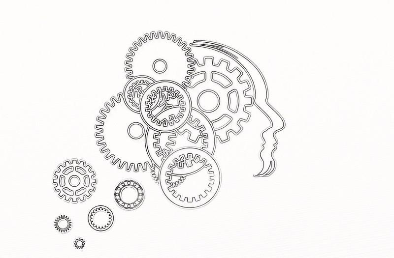 Los sesgos cognitivos: descubriendo un interesante efecto psicológico