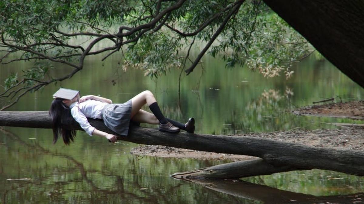 Mujer subida a una rama, leyendo.
