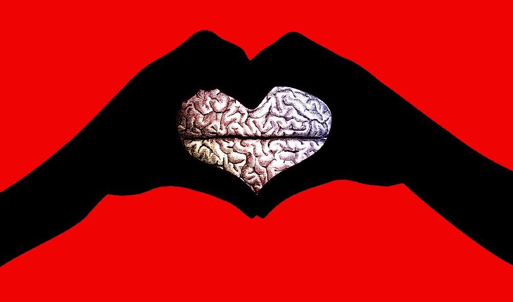 Neurobiología del amor: la teoría de los 3 sistemas cerebrales