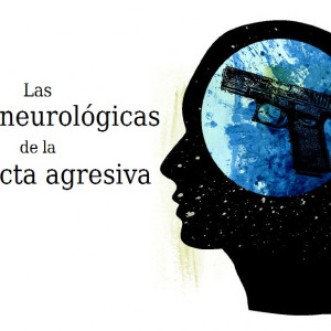 Las bases neurológicas de la conducta agresiva