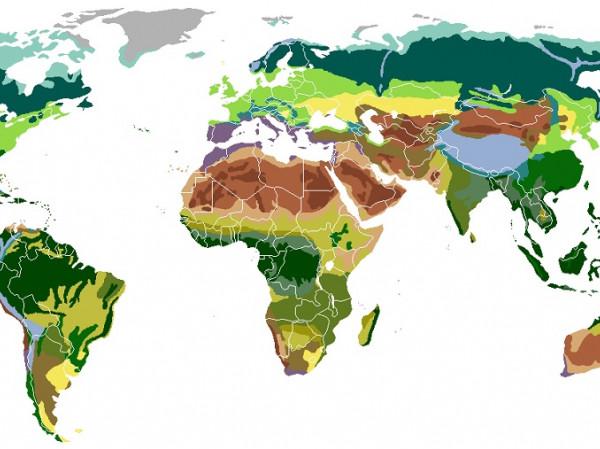 Continentes del mundo y sus paises yahoo dating