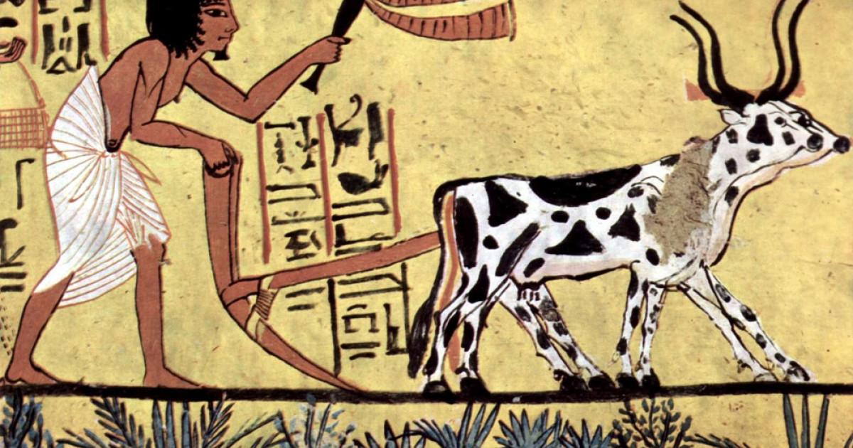 Las 6 Etapas De La Prehistoria