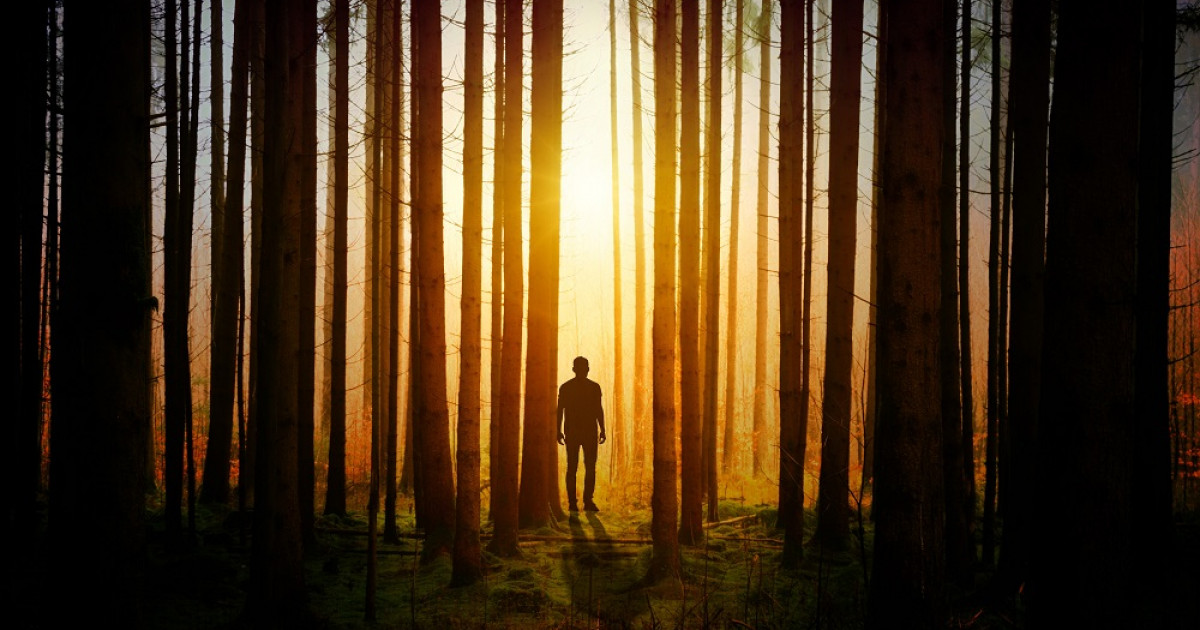 Las 70 Mejores Frases Y Citas Celebres De Misterio