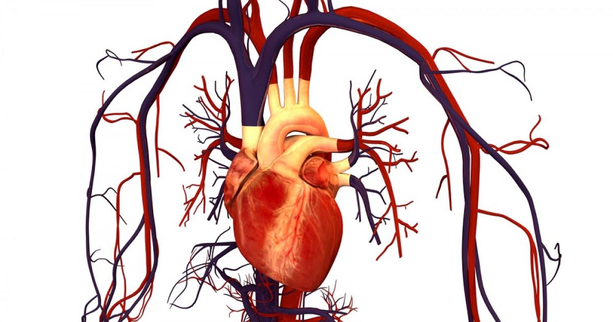 Ejemplo de enfermedad coronaria en psicología