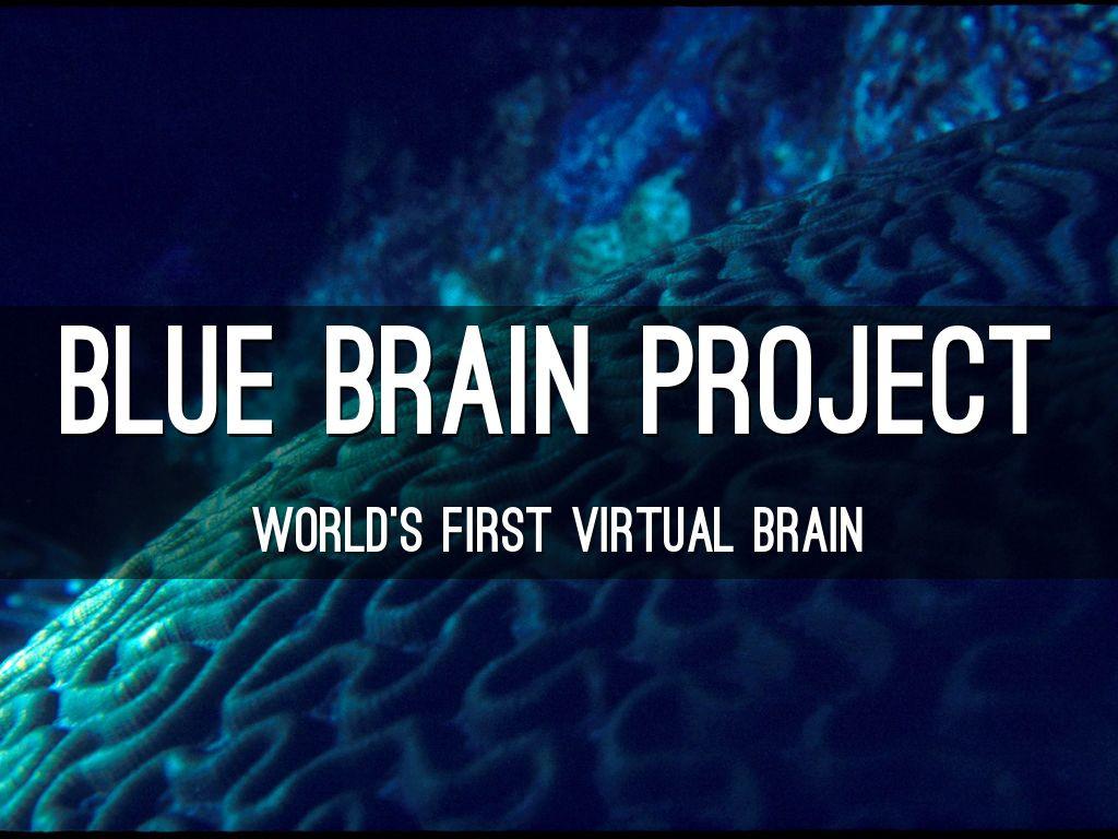 Blue Brain Project: reconstruyendo el cerebro para comprenderlo mejor