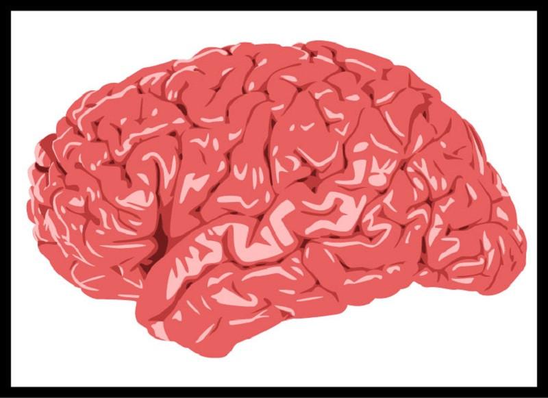 Programación Neurolingüística (PNL): ¿qué es y cómo funciona?