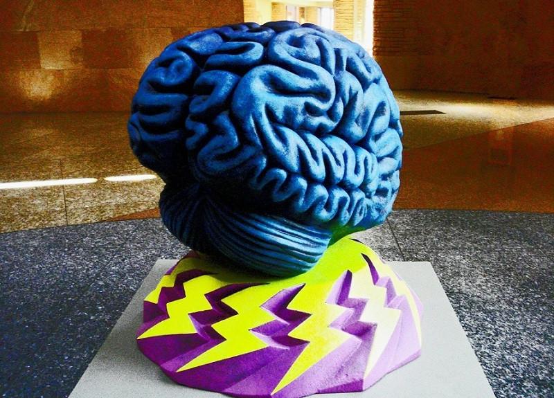 ¿Por qué estudiar Psicología? 10 puntos que debes valorar