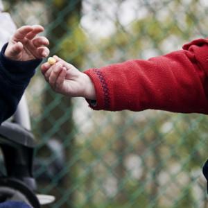 Altruismo: desarrollo del yo prosocial en los niños