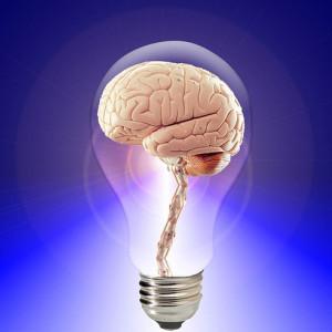 Inteligencia Fluida e Inteligencia Cristalizada: ¿qué son?