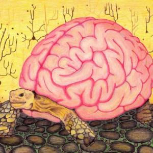 """""""Heurísticos"""": los atajos mentales del pensamiento humano"""