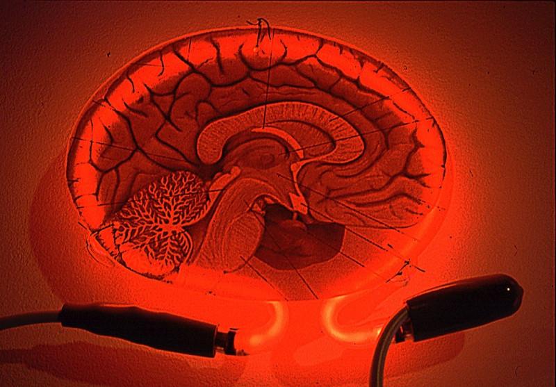 Los 10 principios de la PNL (Programación Neurolingüística)