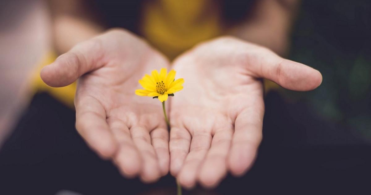 Para Qué Sirve Pedir Perdón Sus 6 Beneficios
