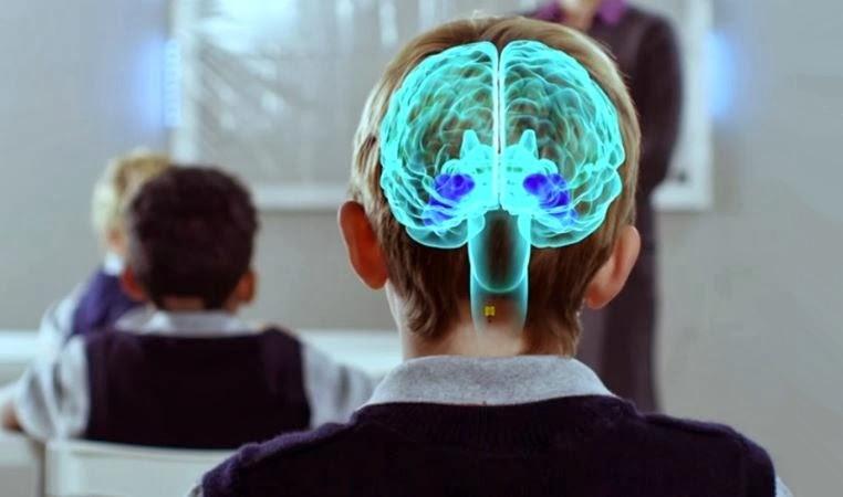 Resultado de imagen de neuroeducacion