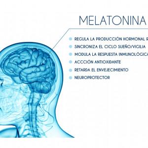 Melatonina: la hormona que controla el sueño y los ritmos estacionales