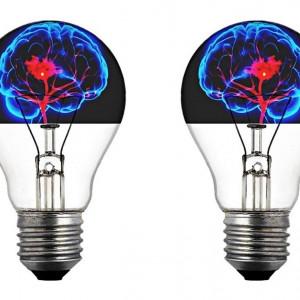 Cómo funciona el cerebro humano, en 8 claves