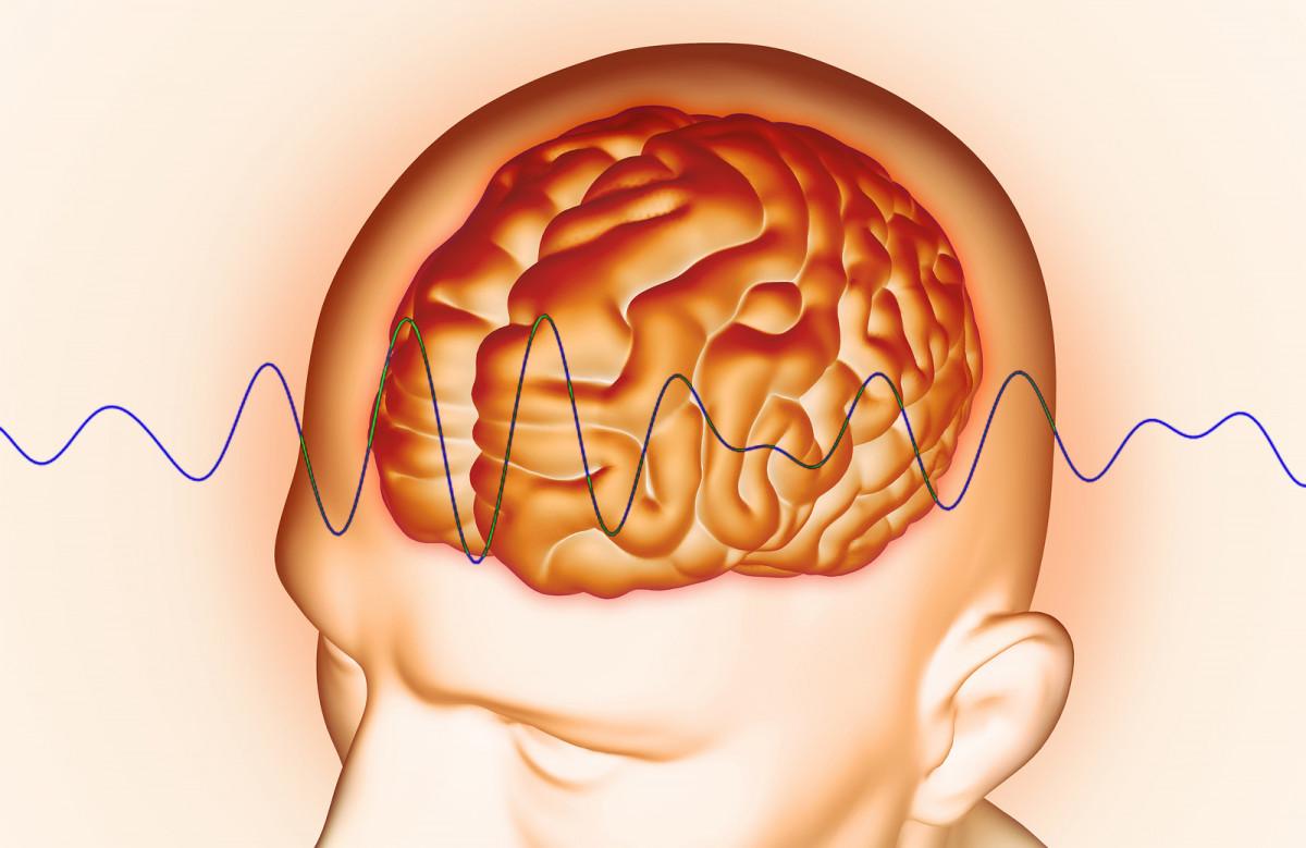 Tipos de ondas cerebrales: Delta, Theta, Alfa, Beta y Gamma