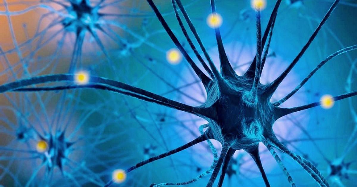 Serotonina: 6 efectos de esta hormona en tu cuerpo y mente