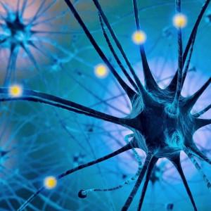 Serotonina: descubre los efectos de esta hormona en tu cuerpo y mente