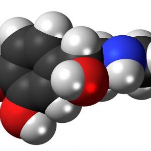 Adrenalina, la hormona que nos activa