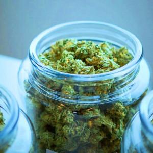 3 beneficios de la marihuana científicamente comprobados