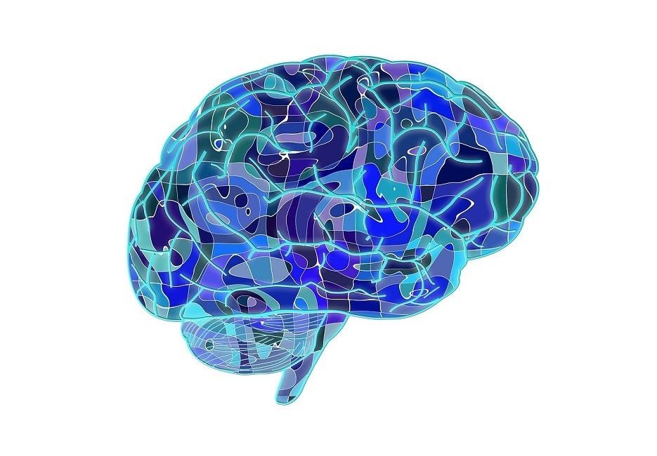 Tipos de memoria: ¿cómo almacena los recuerdos el cerebro humano?