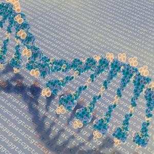 ¿Qué es la epigenética? Claves para entenderlo