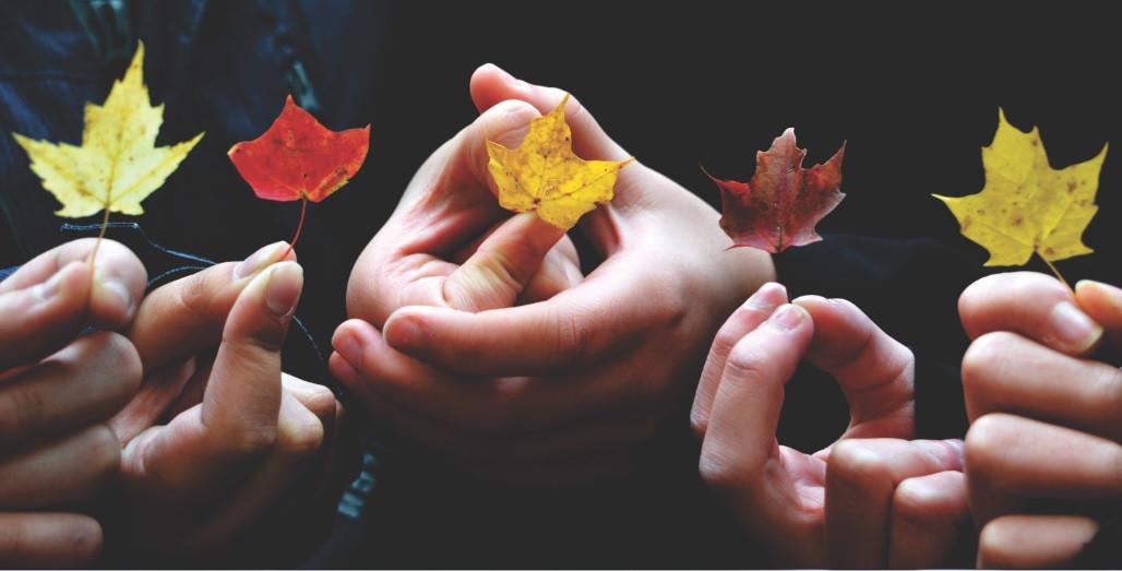 Psicología de los Grupos: definición, funciones y autores principales