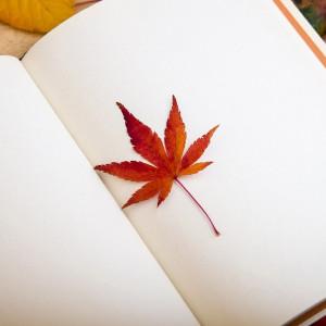 Terapia Narrativa: la forma de psicoterapia basada en historias sobre la vida del paciente