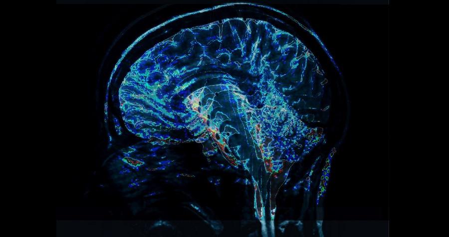 Terapias Neurocientíficas: una revolución en la psicoterapia