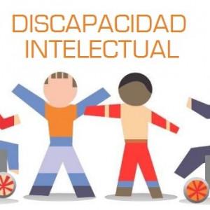 La discapacidad intelectual y del desarrollo