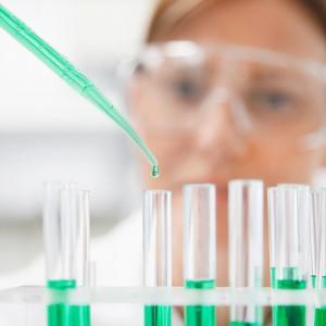 Los 15 tipos de investigación (y características)