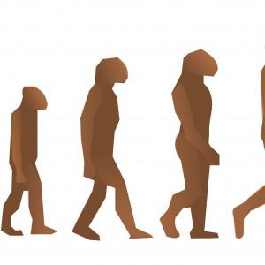 Diferencias entre Psicología evolutiva y Psicología evolucionista