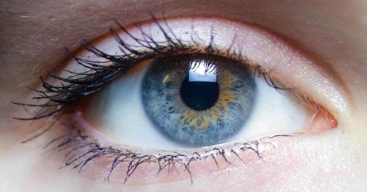 Las 11 partes del ojo y sus funciones