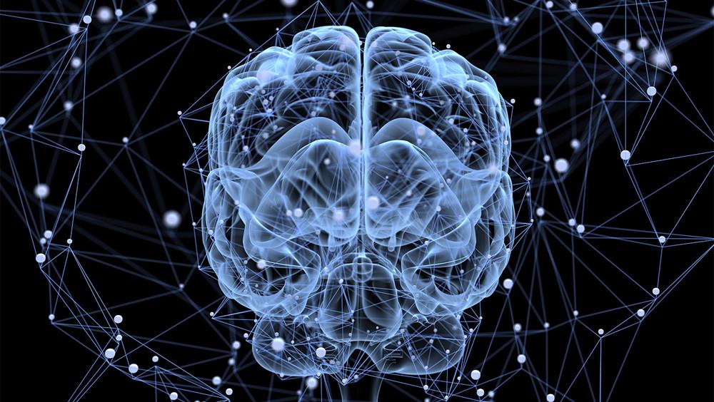 Memoria de trabajo (operativa): componentes y funciones