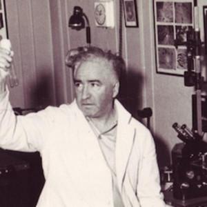 Las psicoterapias corporales de Reich, Lowen y Gendlin