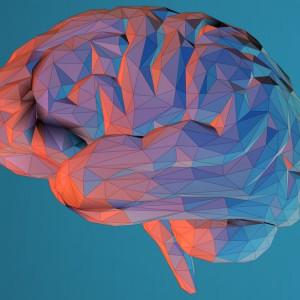 La meditación produce cambios en el cerebro, según la ciencia