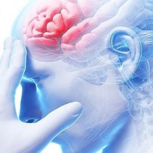¿Qué es el lóbulo frontal y cómo funciona?