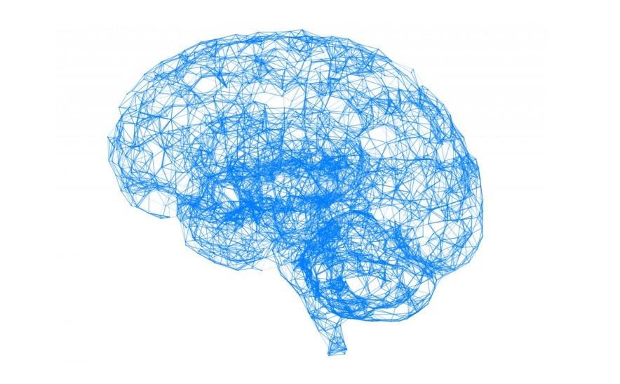 La teoría de la inteligencia de Raymond Cattell