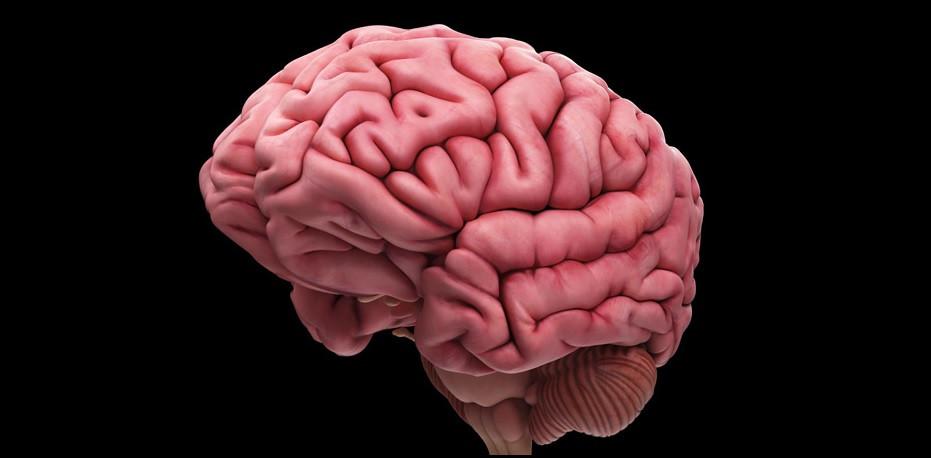 Encefalopatía Hipóxica: causas, síntomas y tratamiento