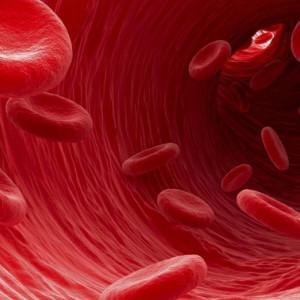 Síndromes mieloproliferativos: tipos y causas