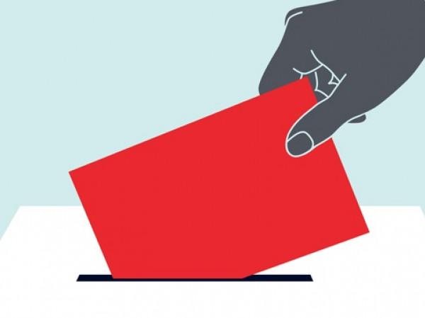 Por Que Votamos Siempre Al Mismo Candidato