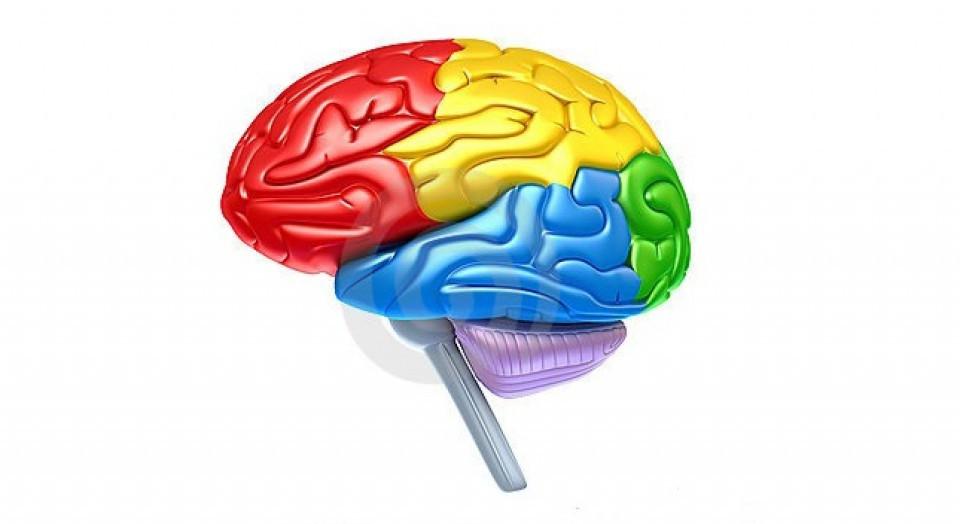 10 fenómenos psicológicos que te sorprenderán Default