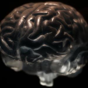Los 4 grandes modelos integradores en terapia psicológica