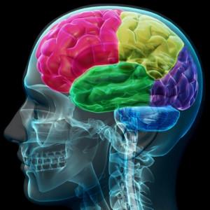 5 descubrimientos psicológicos impresionantes