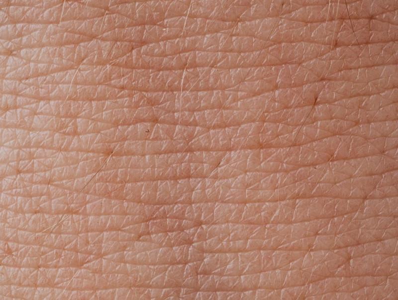 Colágeno de la piel