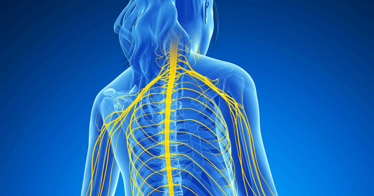 Pellizcado el nervioso dolor cuerpo todo en